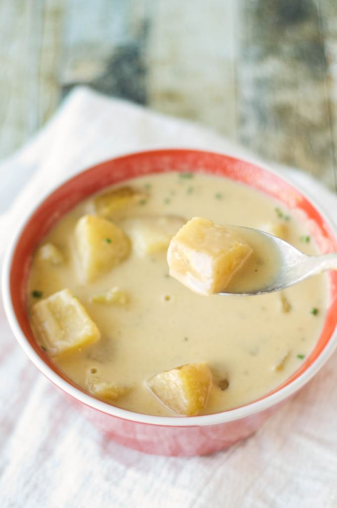 Slow Cooker Beef Cheese Soup-5