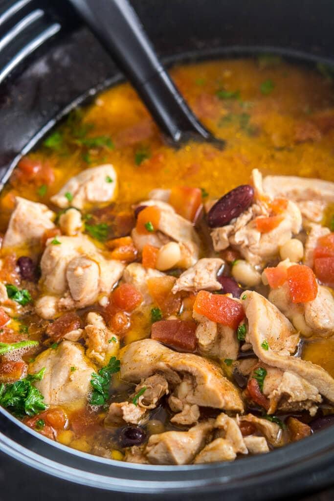 Slow Cooker Spicy Chicken Stew Slow Cooker Gourmet