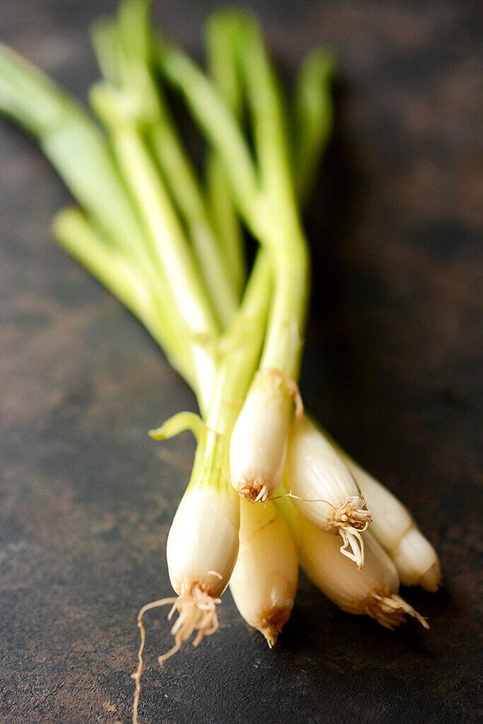 Close up pictures of fresh green onions used in the Slow Cooker Loaded Baked Potato Soup.